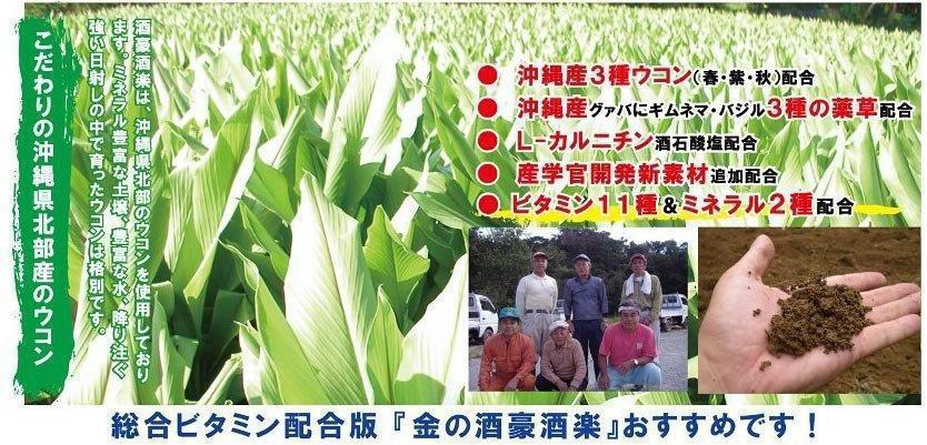 沖縄県北部産のウコン