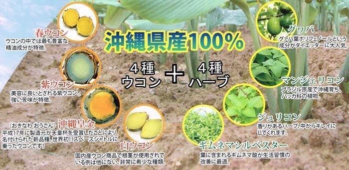 沖縄県産100%