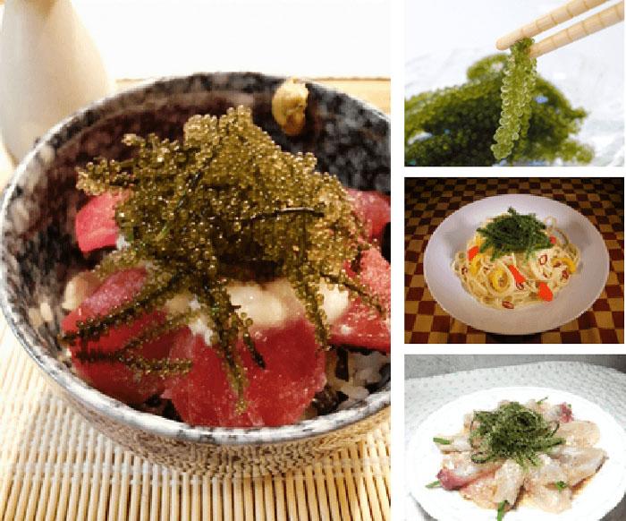 海ぶどう料理