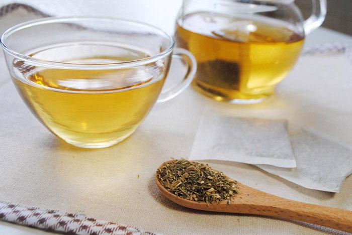 モリンガ茶ホット